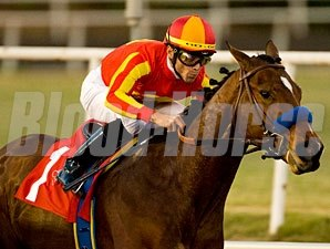 Lookin At Lucky wins the 2009 Del Mar Futurity.