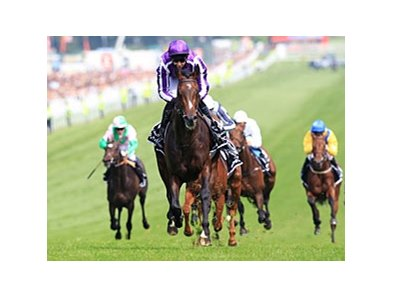 "Camelot leaves the rest behind in the Investec Derby. <br><a target=""blank"" href=""http://photos.bloodhorse.com/AtTheRaces-1/at-the-races-2012/22274956_jFd5jM#!i=1881476067&k=prLpr4N"">Order This Photo</a>"