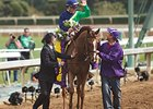 Dayatthespa Named NY-Bred Horse of the Year