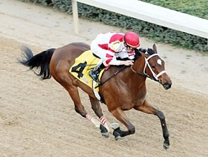 Havre de Grace wins the 2011 Azeri.