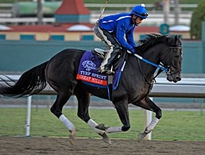 Great Mills at Santa Anita 10/28/2012.