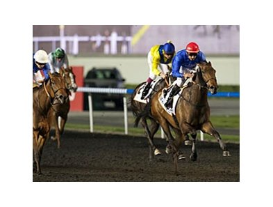 Lovely Pass bounds home to win the United Arab Emirates One Thousand Guineas.