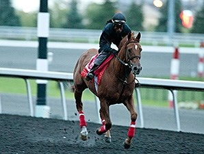 Kaigun - Woodbine, September 13, 2014.