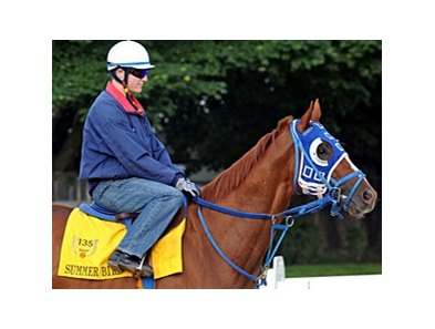 "Summer Bird<br><a target=""blank"" href=""http://www.bloodhorse.com/horse-racing/photo-store?ref=http%3A%2F%2Fpictopia.com%2Fperl%2Fgal%3Fprovider_id%3D368%26ptp_photo_id%3D8205499%26ref%3Dstory"">Order This Photo</a>"