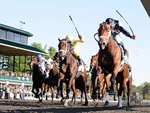 Data: Slight Drop in Fatal Racehorse Injuries