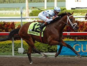 Big Brown romps in the Florida Derby.