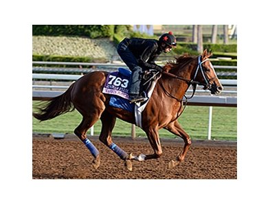 "Majestic Presence is ready for a big effort in the 14 Hands Winery Breeders' Cup Juvenile Fillies.<br><a target=""blank"" href=""http://photos.bloodhorse.com/BreedersCup/2014-Breeders-Cup/Works/i-6BQZS7H"">Order This Photo</a>"