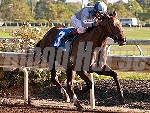 Seduire wins the 2014 Wine Country Debutante Stakes.