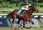 "Honorable Miss Handicap winner Any Limit is back in New York for the Top Flight Handicap.<br><a target=""blank"" href=""http://www.bloodhorse.com/horse-racing/photo-store?ref=http%3A%2F%2Fpictopia.com%2Fperl%2Fgal%3Fprovider_id%3D368%26ptp_photo_id%3D5356547%26ref%3Dstory"">Order This Photo</a>"