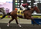 River Seven breaks his maiden in the Grey Stakes at Woodbine.