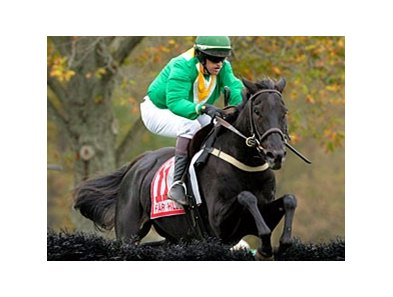 Black Jack Blues in the Grand National Steeplechase.