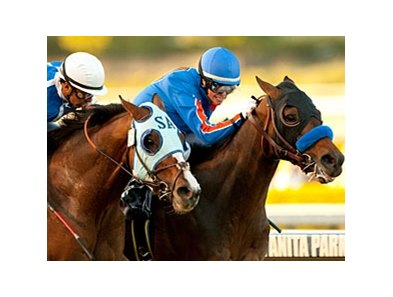 Setsuko (left) finished a nose behind Game On Dude in the 2011 Santa Anita Handicap.
