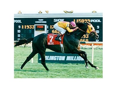 Mecke winning the Arlington Million.