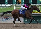 "Kathmanblu, a stakes winner on grass and dirt, tries Polytrack in the Central Bank Ashland.<br><a target=""blank"" href=""http://www.bloodhorse.com/horse-racing/photo-store?ref=http%3A%2F%2Fpictopia.com%2Fperl%2Fgal%3Fprovider_id%3D368%26ptp_photo_id%3D9412825%26ref%3Dstory"">Order This Photo</a>"