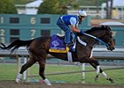 My Miss Aurelia