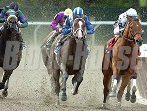 Lucky Island (center) won his third consecutive race with a win in the Bold Ruler (gr. III) May 10 at Belmont Park.