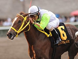Gulfstream Oaks: Yara, Grace Hall Meet Again