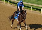 "Desert Party will have surgery for a bone chip in his left front ankle.<br><a target=""blank"" href=""http://www.bloodhorse.com/horse-racing/photo-store?ref=http%3A%2F%2Fpictopia.com%2Fperl%2Fgal%3Fprovider_id%3D368%26ptp_photo_id%3D8040102%26ref%3Dstory"">Order This Photo</a>"
