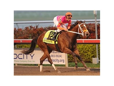 "Bickersons was dominant in the Forward Gal.<br><a target=""blank"" href=""http://www.bloodhorse.com/horse-racing/photo-store?ref=http%3A%2F%2Fpictopia.com%2Fperl%2Fgal%3Fprovider_id%3D368%26ptp_photo_id%3D8775092%26ref%3Dstory"">Order This Photo</a>"