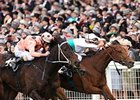 Black Caviar Remains Unbeaten in 22 Starts