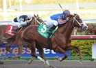 "Favorite Munnings delivers in the Gulfstream Park Sprint Championship Stakes. <br><a target=""blank"" href=""http://www.bloodhorse.com/horse-racing/photo-store?ref=http%3A%2F%2Fpictopia.com%2Fperl%2Fgal%3Fprovider_id%3D368%26ptp_photo_id%3D8792397%26ref%3Dstory"">Order This Photo</a>"