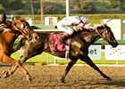 "Ariege holds off favored Golden Doc A by a half-length to take the Santa Anita Oaks.<br><a target=""blank"" href=""http://www.bloodhorse.com/horse-racing/photo-store?ref=http%3A%2F%2Fpictopia.com%2Fperl%2Fgal%3Fprovider_id%3D368%26ptp_photo_id%3D3789817%26ref%3Dstory"">Order This Photo</a>"