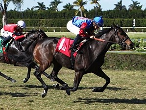 Kya One wins the 2012 My Charmer Handicap.