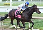Upstart On Target for Florida Derby