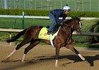 Normandy Invasion prior to the 2013 Kentucky Derby.