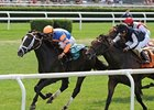 "Notacatbutallama overtakes Joha to win the Solar Splendor Stakes.<br><a target=""blank"" href=""http://photos.bloodhorse.com/AtTheRaces-1/at-the-races-2013/27257665_QgCqdh#!i=2632898093&k=jXjD5vx"">Order This Photo</a>"