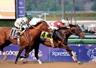 Slideshow: 2012 Breeders' Cup - Day 2