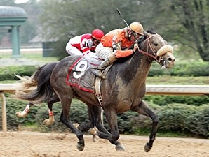 Win Willy wins the 2009 Rebel Stakes.