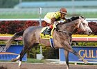 Graydar Wins Grade I Donn in First Stakes Try