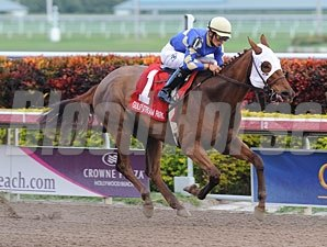 It's Me Mom wins the 2012 Sunshine Millions Filly & Mare Sprint.