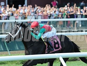 Hogy wins the 2013 Troy Stakes.