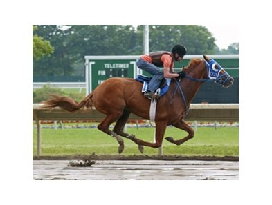 Belmont Stakes Champion Summer Bird, with regular rider Kent Desormeaux in the saddle, was on the track at Monmouth Park on Sunday morning, July 26th.