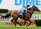 "Grade I winner Dynaforce makes her 2009 debut in the Gallorette Handicap.<br><a target=""blank"" href=""http://www.bloodhorse.com/horse-racing/photo-store?ref=http%3A%2F%2Fpictopia.com%2Fperl%2Fgal%3Fprovider_id%3D368%26ptp_photo_id%3D6084313%26ref%3Dstory"">Order This Photo</a>"