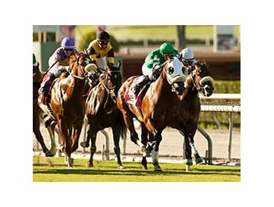 Chips All In takes the Eddie D Stakes at Santa Anita.