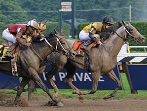 Macho Again Pulls Jim Dandy Upset