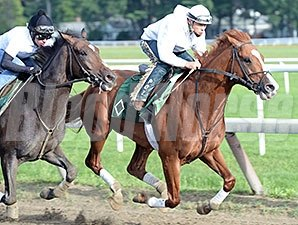 Lea (front) and Charge Now work at Saratoga on August 16, 2014.