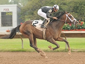 Ibboyee wins the 2009 Aspirant Stakes.