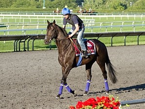 Bridge of Gold - Arlington Park, August 17, 2012.