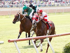 Dean's Kitten wins the Dallas Turf Cup.