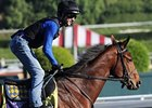"Undefeated Lookin At Lucky drew the outside post 13.<br><a target=""blank"" href=""http://www.bloodhorse.com/horse-racing/photo-store?ref=http%3A%2F%2Fpictopia.com%2Fperl%2Fgal%3Fprovider_id%3D368%26ptp_photo_id%3D8598915%26ref%3Dstory"">Order This Photo</a>"