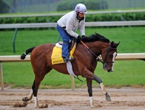 Belmont Field Dwindles; Stay Put Works
