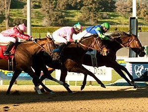 Vision in Gold wins the 2011 Santa Maria