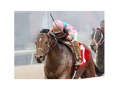 Caleb's Posse faces 9 in the Ohio Derby.