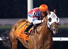 Groupie Doll faces 7 in the Thoroughbred Club of America Stakes.