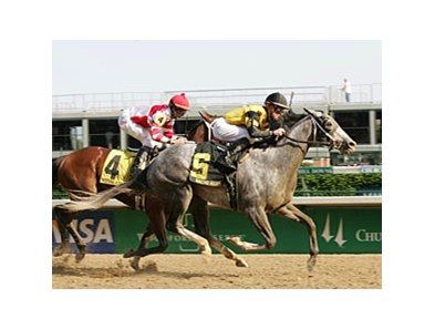 Derby Trial winner Macho Again is back in the Preakness picture.