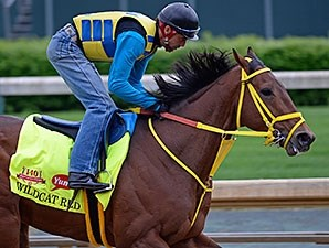 Wildcat Red - Churchill Downs, April 25, 2014.